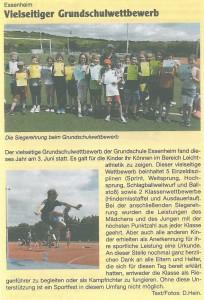 2015.06.11. Zeitungsartikel Sportfest