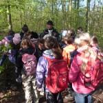 2016.04.20. Waldjugendspiele 3a und 3b Bild 2 klein